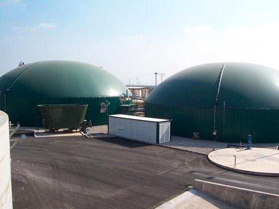 biomasa-1