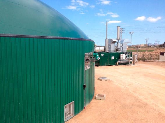 biomasa-2